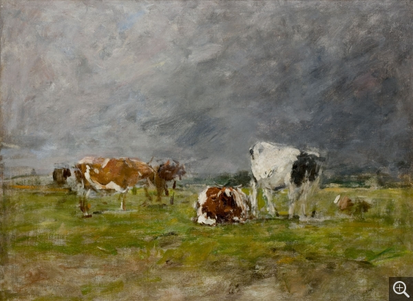 Eugène BOUDIN (1824-1898), Studies of Cows, ca. 1881-1888, oil on canvas, 41 x 55 cm. © MuMa Le Havre / Florian Kleinefenn