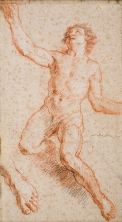 Charles de la FOSSE (1636-1716), Study for Saint John the Evangelist, red chalk reinforced with Pierre Noire pencil, traces of white chalk, 41.7 x 23 cm. © MuMa Le Havre / Florian Kleinefenn