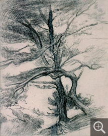 Henri Edmond CROSS (1856-1910), Landscape with Two Pines. Study for Le Cap Layet (Provence), charcoal. Senn-Foulds collection. © MuMa Le Havre / Florian Kleinefenn