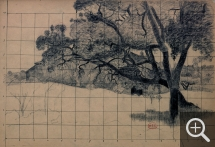 Henri Edmond CROSS (1856-1910), Study of Pines, black chalk. Senn-Foulds collection. © MuMa Le Havre / Florian Kleinefenn