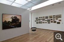 "Partial view of ""Les Territoires du désir"" exhibition. Left, Bestiary, Large Landscape III, photograph by Jean-Luc Tartarin, opposite the wall of Cows by Eugène Boudin, right. © MuMa Le Havre / Charles Maslard"